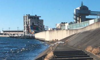 沼津港の海岸